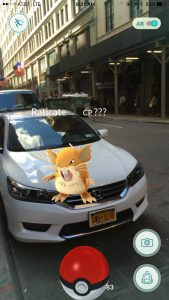 raticate pokemon in nyc